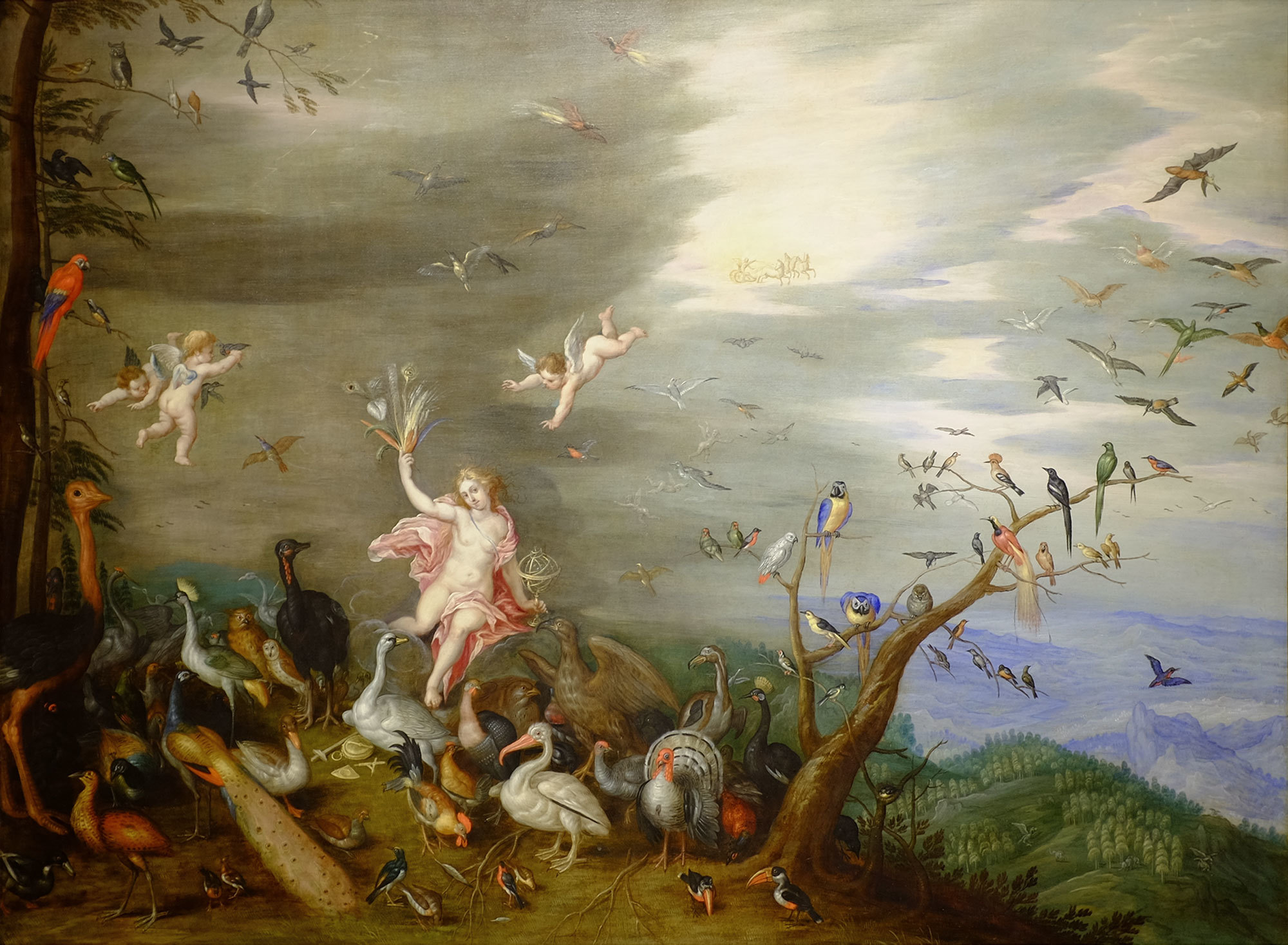 Jan van Kessel, Flemish, 1626 - 1679. Air, ca. 1647. Oil on copper, 30 × 39 in. (76.2 × 99.1 cm). Gift of Mr. and Mrs. William L. Richards through the Viola E. Bray Charitable Trust Fund, 1965.33