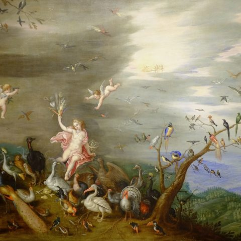 Jan van Kessel Flemish, 1626 - 1679 Air, ca. 1647 Oil on copper 30 × 39 in. Gift of Mr. and Mrs. William L. Richards through the  Viola E. Bray Charitable Trust Fund 1965.33